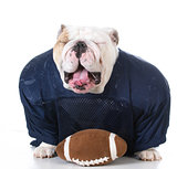 bulldog football player