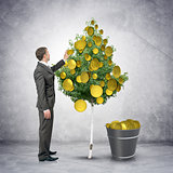 Businessman collecting coins from tree