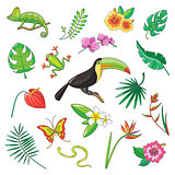 Tropical Plants and Animals Icon
