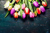 Tulips on a wooden background