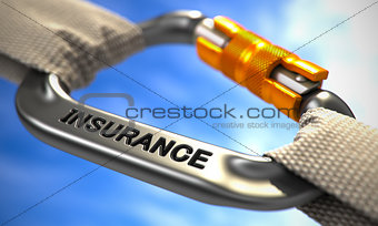Chrome Carabine Hook with Text Insurance.