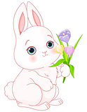 Bunny & Flowers