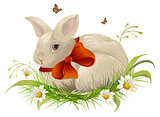 Cute rabbit with bow sitting on grass. Easter rabbit with red ribbon