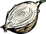 Cut yellow raw onion illustration