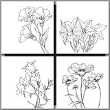 Set of hand drawn flowers sketches