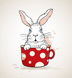 White rabbit in a red cup
