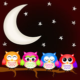 Owls good night