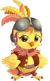 yellow bird pilot