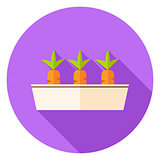 Carrots Vegetables in Garden Pot Circle Icon