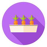 Carrots Vegetables in Garden Pot Circle Icon
