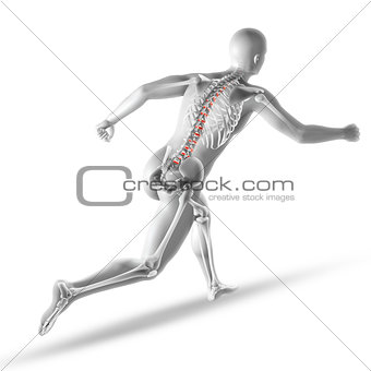 3D male medical figure running with spine discs highlighted