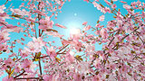 3D painted effect of cherry blossom
