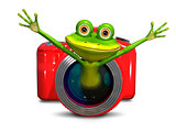 Frog in the camera