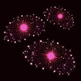 Set of Pink Fireworks