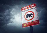 Bear Stock Market