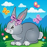 Rabbit topic image 4