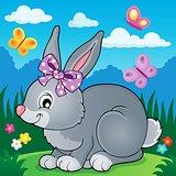 Rabbit topic image 4