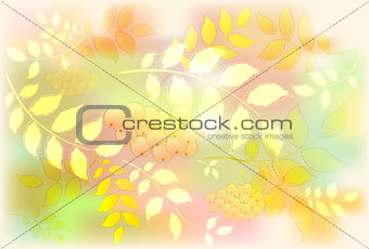 Background from leaves and rowan. Autumn leaf fall. EPS10 vector illustration