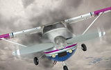 Cessna 172 With Smoke Coming From Engine Against Gray Sky