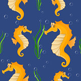 Funny sea horse. Seamless background