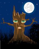 Terrible stump in the night