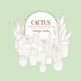 Vintage Sketch With Cactus