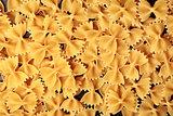 Farfalle italian pasta