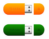 two flash drives