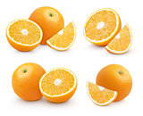 Set of group orange citrus fruit isolated on white