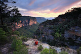Sitting on the edge of wilderness Blue Mountains Australia