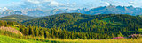 Summer mountain country panorama.