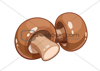 Fresh champignon mushroom vector illustration eps10 isolated