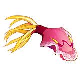 Pink Squid Illustration