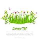 Vector illustration grass