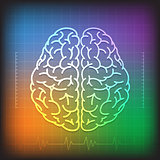Human Brain Concept with Wave Diagram Colorful Background