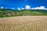 Wheat field and pictoresque mountain village