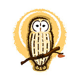 Barred Owl Illustration