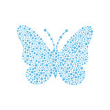Butterfly in blue design
