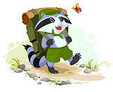 Scout raccoon with backpack goes camping. Summer Camping