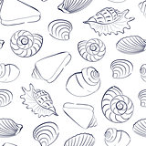 Seashells white seamless background