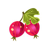 Gooseberry  Flat Vector Sticker