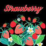 Illustrationof a bright tasty strawberry
