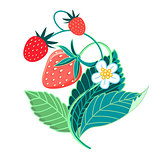 illustration of colorful tasty strawberries