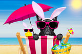 easter bunny dog at the  beach