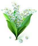 Flower lily valley. Bouquet lily of valley