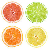 Slices of grapefruit, lime, lemon, orange