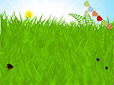 Spring background with grass and bunting