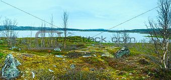 Tornetrask lake summer view ( Lapland, Sweden)
