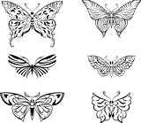 stylized butterfly set