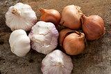 Fresh raw whole garlic bulbs and onions